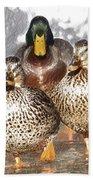 Duck - Id 16235-220402-2840 Bath Towel