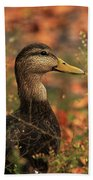 Duck In Autumn Bath Towel