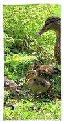 Ducklings Through The Ferns Bath Towel