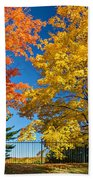 Dueling Maples Bath Towel