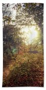 Dunmore Wood - Autumnal Morning Hand Towel
