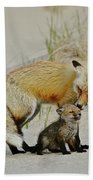 Dunr Fox Father And Child Hand Towel