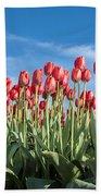 Dutch Tulips Second Shoot Of 2015 Part 10 Bath Towel