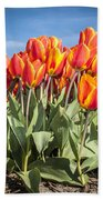 Dutch Tulips Second Shoot Of 2015 Part 3 Bath Towel
