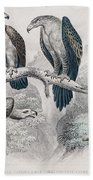 Eagle Birds Print Bath Towel