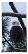 Eagle On A Frosted Limb Bath Towel