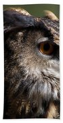 Eagle Owl 4 Bath Towel