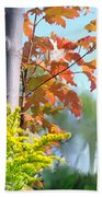 Early Autumn Bath Towel