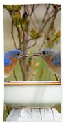 Early Bird Breakfast For Two Hand Towel