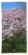 Early Blooms Bath Towel