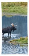 Early Morning Crossing In Grand Teton Hand Towel