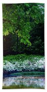 Early Morning Light At The Azalea Pond Hand Towel