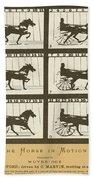 Early Photography, 1878 Bath Towel