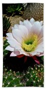 Easter Lily Cactus Bath Towel