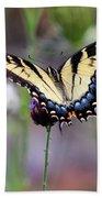 Eastern Tiger Swallowtail Butterfly In Garden 2016 Bath Towel
