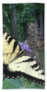 Eastern Tiger Swallowtail Sipping Nectar Bath Towel