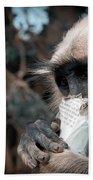 Eating Monkey Bath Towel