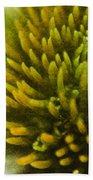 Echinacea Bath Towel