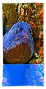 Eel In A Crack Between Two Anemone Worlds In Monterey Aquarium-california Bath Towel