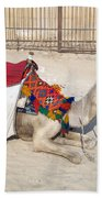 Egypt - Camel Bath Towel