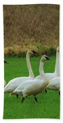 Eight Beautiful Swans Bath Towel