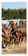 Belgian Eight Horse Hitch  Hand Towel