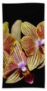 Elegant Orchid On Black Bath Towel