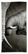 Elephant Affection Hand Towel