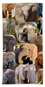 Elephant Faces Bath Towel