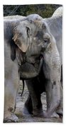 Elephant Family Bath Towel