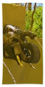 Elephant Fountain One Hand Towel