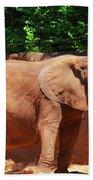 Elephant In Red Clay Bath Towel