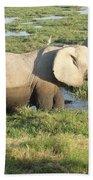 Elephant Mother And Calves Bath Towel