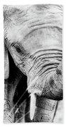 Elephant Portrait In Black And White Bath Towel