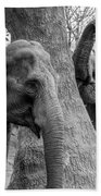 Elephant Tree Black And White  Hand Towel