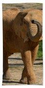 Elephant Walk Bath Towel