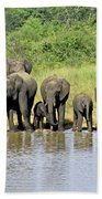 Elephants At The Waterhole   Bath Towel