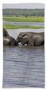 Elephants Crossing Chobe River Bath Towel