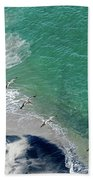 Eleven Brown Pelicans Bath Towel