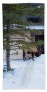 Elk Come Calling Bath Towel