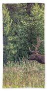 Elk In The Forest Bath Towel