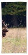 Elk Sitting Down Hand Towel