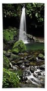 Emerald Pool Bath Towel