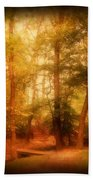 Enchanted Path 2 - Allaire State Park Bath Towel