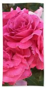 Energizing Pink Roses Bath Towel