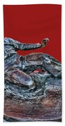 Enos Country Slaughter Statue - Busch Stadium Hand Towel