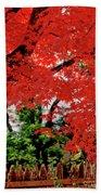 Essence Of Japanese Maple Tree Bath Towel