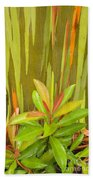 Eucalyptus And Leaves Bath Towel