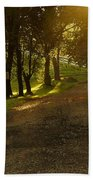 Evening Path Bath Towel