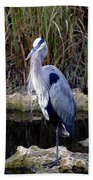 Everglades Heron Bath Towel